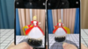 iPhone 12全系怎么选?