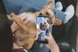 三星Galaxy S8最新宣传片