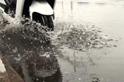 雅迪E7Li雨中前行测试