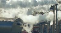 NCCO:实验视频