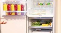 IFA2016现场直击(27):容量大 零度保鲜 博世冰箱介绍