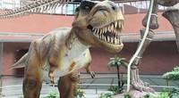 爱奇艺奇遇VR一体机《恐龙博物馆》
