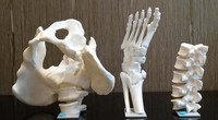 TCT亚洲3D打印展:专注医疗 ELSTN医用3D打印机与扫描仪首发