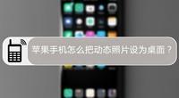 苹果手机怎么把动态照片设为桌面?