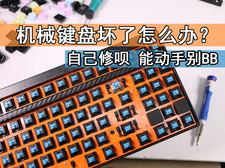 机械键盘坏了怎么办?自己修呗!