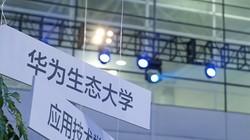 华为生态大学致力于成为中国数字化转型的人才引擎