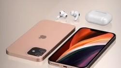 iPhone12要比11还便宜,最低只要4000元,SE不香了