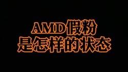 我突然发现AMD假粉有好多啊