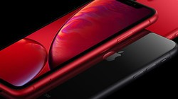 「视鉴」90秒看懂iPhone XR:降价后更香了