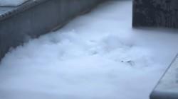 把10公斤干冰倒进鱼塘会发生什么?