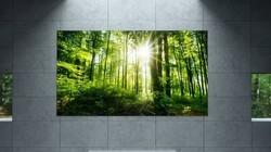 可以贴在墙上,薄如纸张,纤薄唯美壁纸OLED