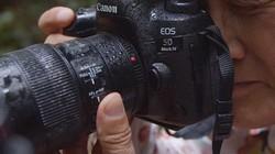 佳能5D4极限挑战-微观世界