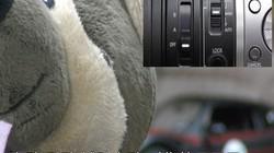 JVC HM360 自动手动辅助自动 对焦效果展示
