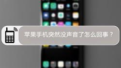 苹果手机突然没声音了怎么回事?