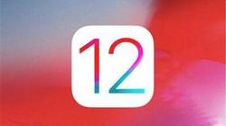科技早报:秒安卓?iOS 12安装率创纪录
