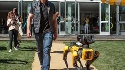 一分钟科技:波士顿动力机器狗再次曝光