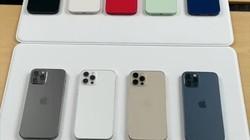 iPhone 12全部颜色上手实拍!蓝色到底好不好看? #iphone12 #iphone