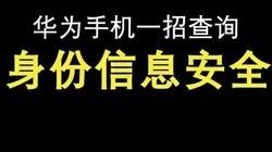 #华为 每天一个小技巧, 你学废了吗,一招查询手机安全