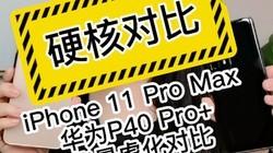 iPhone VS华为P40 Pro+背景虚化对比