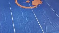 狮子:我要的洗剪吹,怎么没有吹?#3d打印 #3d打印作品 #玩转3d打印 #托尼老师 #3d打印diy